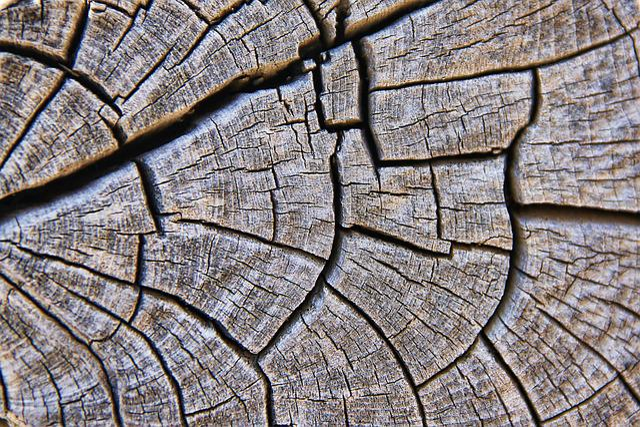 Texture, Wood, Grain, Structure, Background