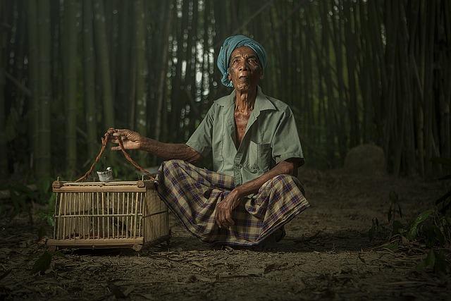 Grandpa, Human Interest, Hobby