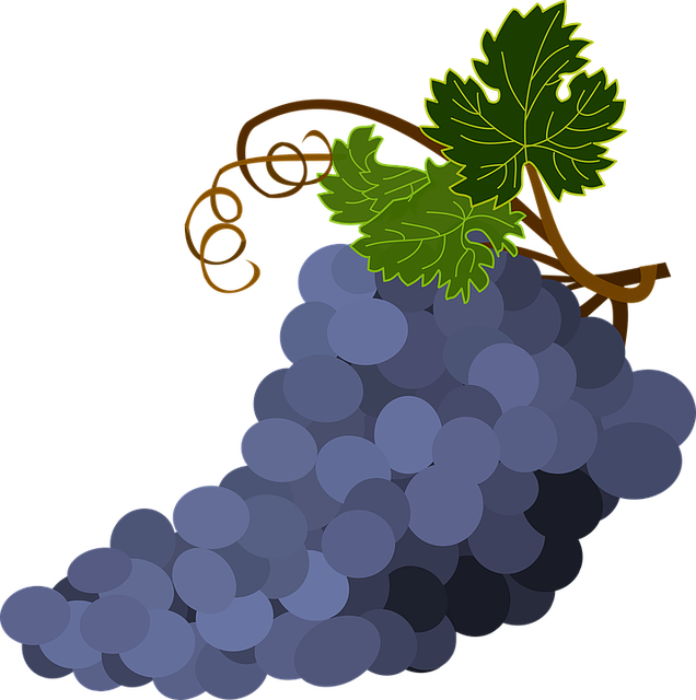 Bunch Of Grapes, Grape Leaves, Grapes, Purple
