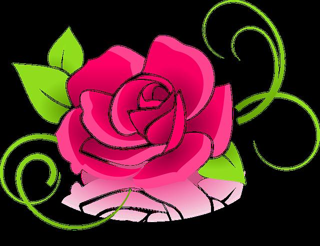 Rose, Graphic, Flower, Deco, Decorative, Floral