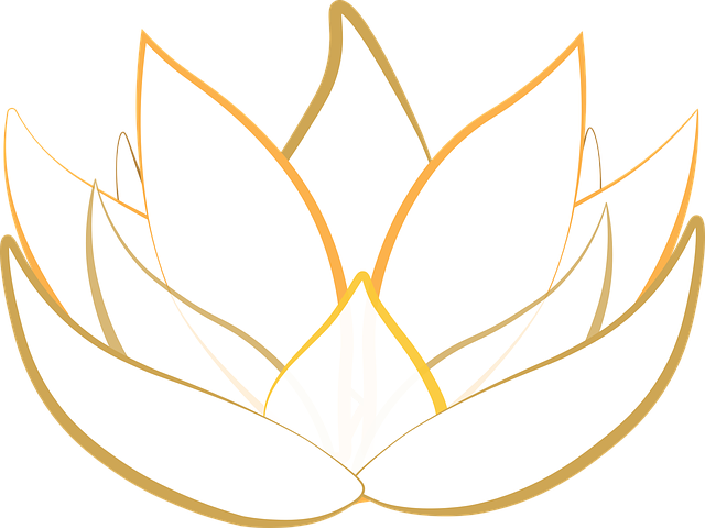 Lotus, Transparent, Blossom, Graphic, Illustrator