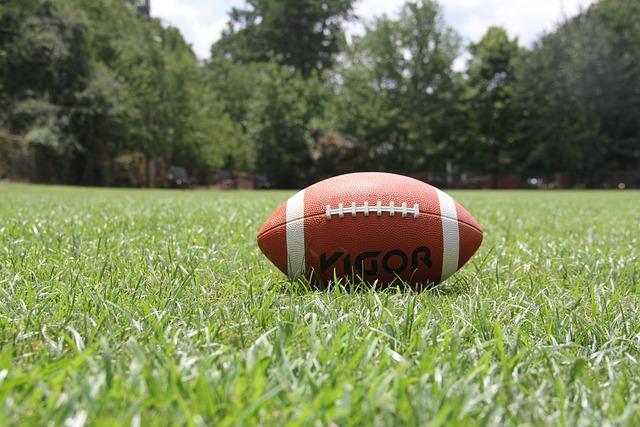 American Football, Football, Sports, Ball, Grass
