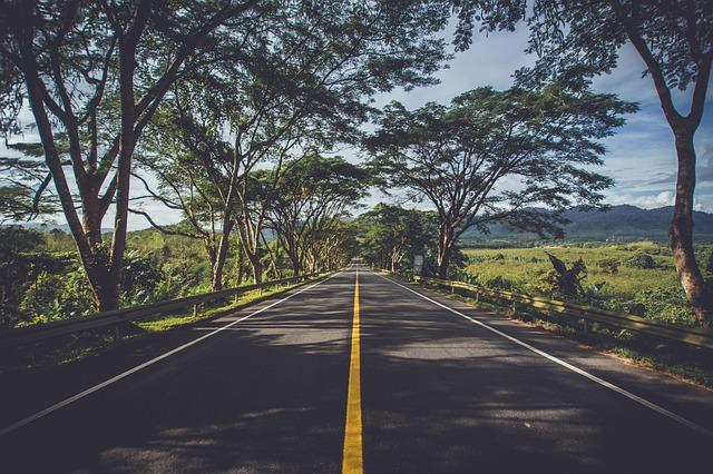 Asphalt, Environment, Grass, Highway, Landscape, Light