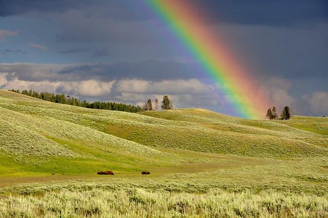 Rainbow, Hills, Meadows, Fields, Grass, Grasslands