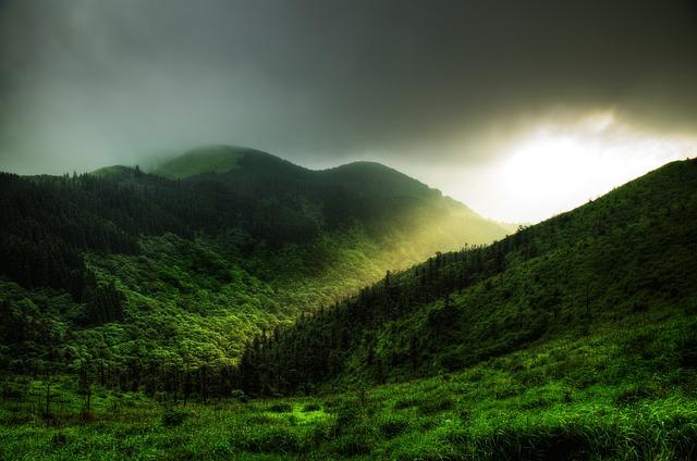 Jesus Light, Mountain, Tree, Grass, Wugongshan