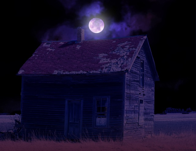 Building, House, Grass, Field, Moon, Night, Sky