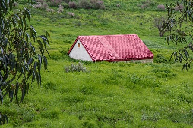 Grass, Overgrown, Green, Lawnmower, Summer, Rural