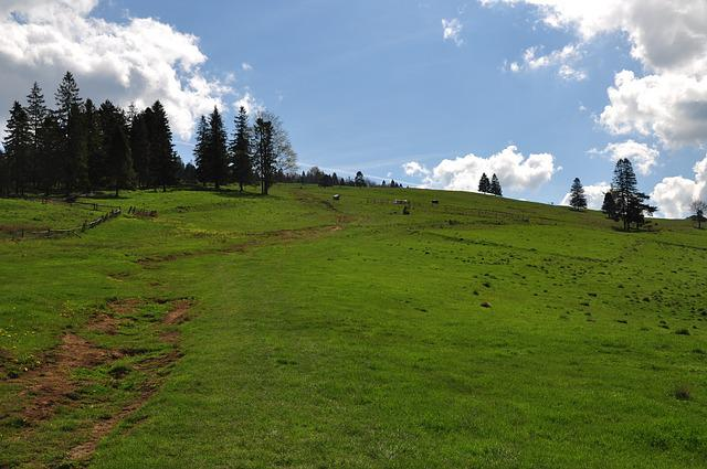 Mountains, Polyana, Grass, Sky, Blue, Nature