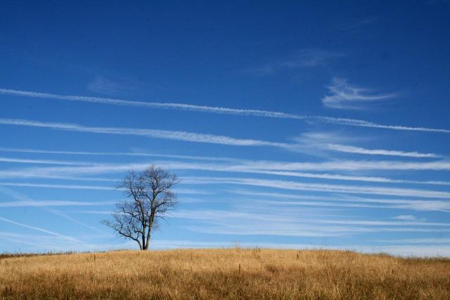 Prairie, Meadow, Midwest, Countryside, Grassland