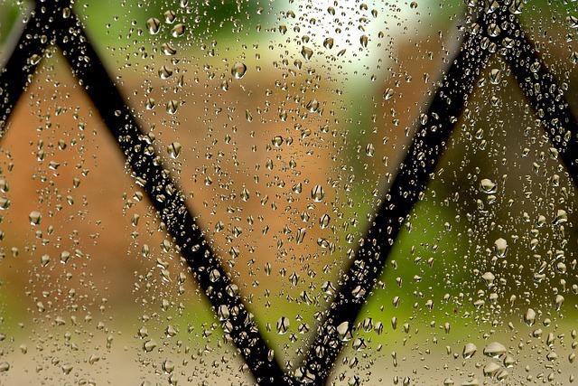 Rain, Window, Grateful, Rainy Window, Drop, Winter