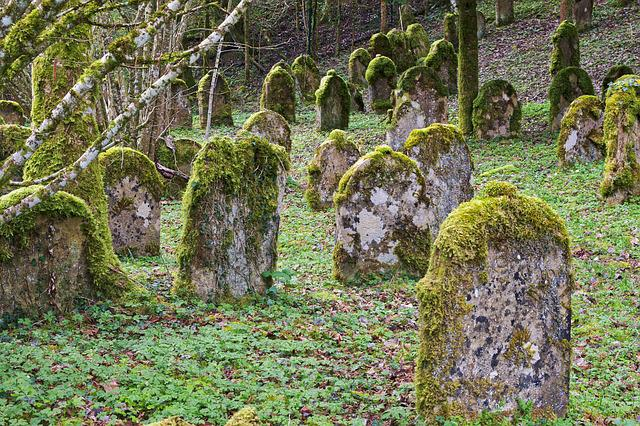 Grave Stones, Jewish Cemetery, Old, Cemetery, Forest