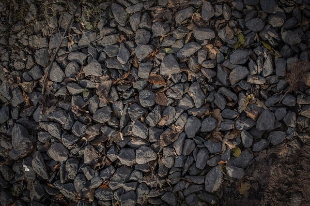 Autumn Leaf, Gravel, Grey, Pattern Texture, Stones