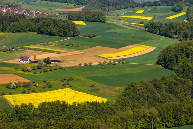 Landscape, Fields, Green, Shades Of Green, Agriculture