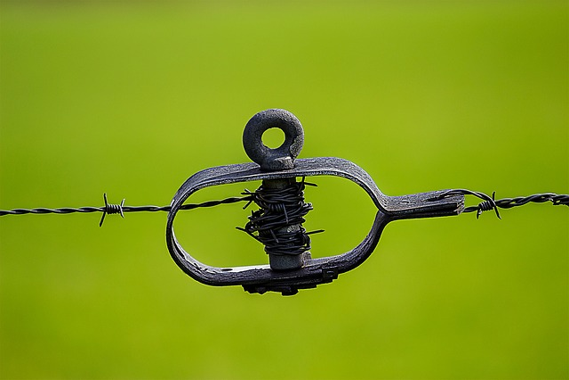 Green, Tiefenschärfe, Focus, Barbed Wire, Close, Wiring