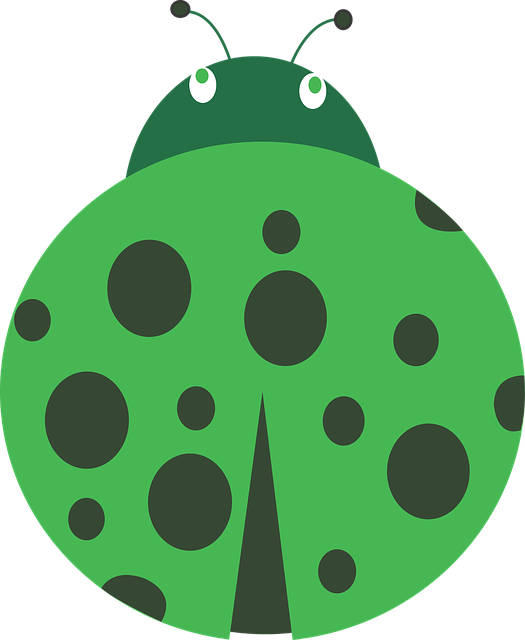 Lady, Bug, April, Green Bug, Green, Insect, Dots, Pink