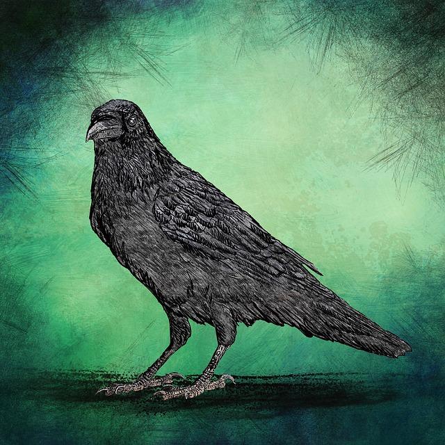Grunge, Vintage, Crow, Green, Scratches, Paper, Texture