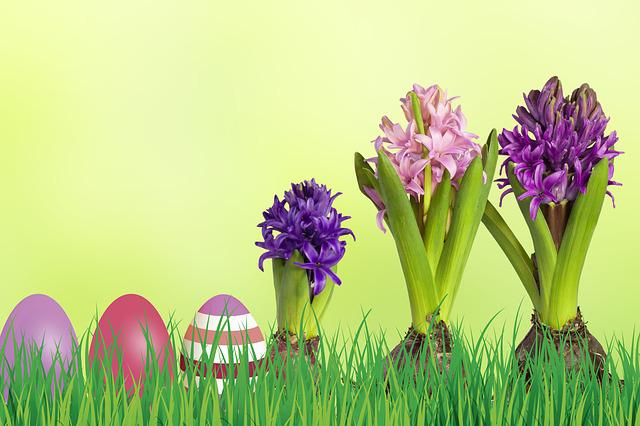 Easter, Grass, Nature, Meadow, Green, Hiding Place