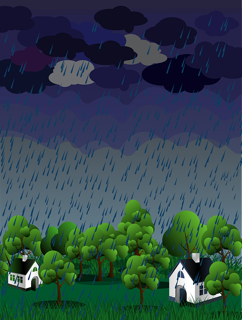 Rain, Nature, Green, Raindrop, Weather, Environment