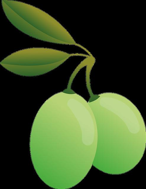 Olives, Green, Oil, Olive Plants, Food, Green Olives