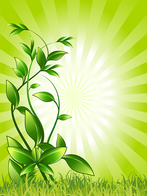 Plant, Green, Growing, Resistance, Survive, Leaves