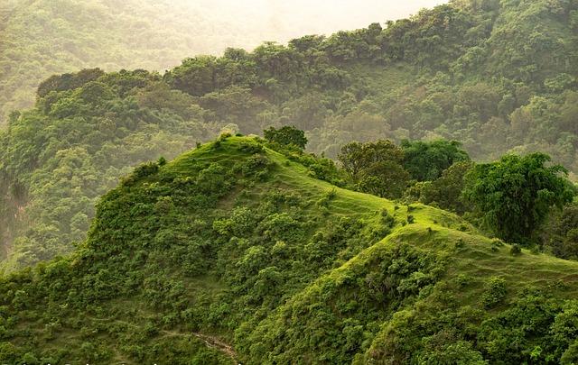 Hill, Grass, Grasslands, Green, Rural, Outdoors
