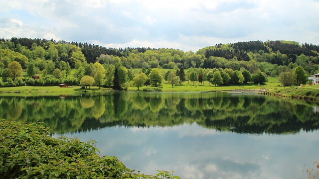 Lake, Rursee, Landscape, Nature, Mirroring, Green