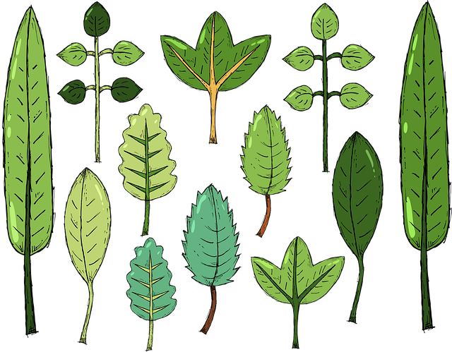 Leaves, Plant, Nature, Green, Cartoons, Design, Symbol