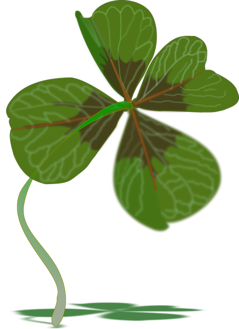 Clover, Plant, Luck, Green