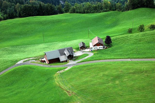 Farm, Mountain Farm, Meadow, Alm, Juicy, Green