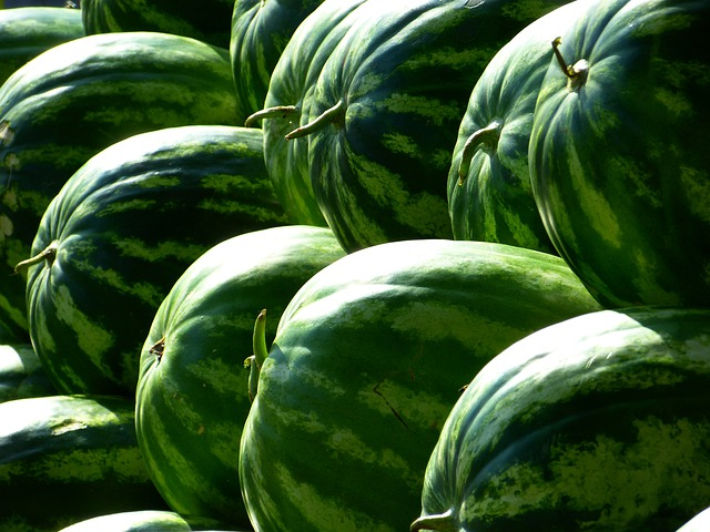 Melons, Water Melons, Fruit, Green, Watermelon