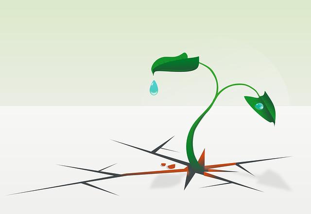 Resistance, Survive, Leaves, Plant, Green