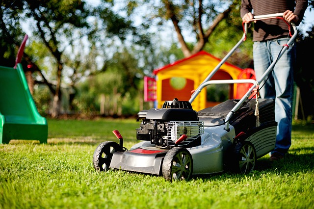 Lawn Mower, Lawn Mowing, Rush, Mow, Man, Green, Person