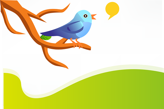 Tweet, Twitter, Bird, Blue, Twig, Branch, Green, Hills