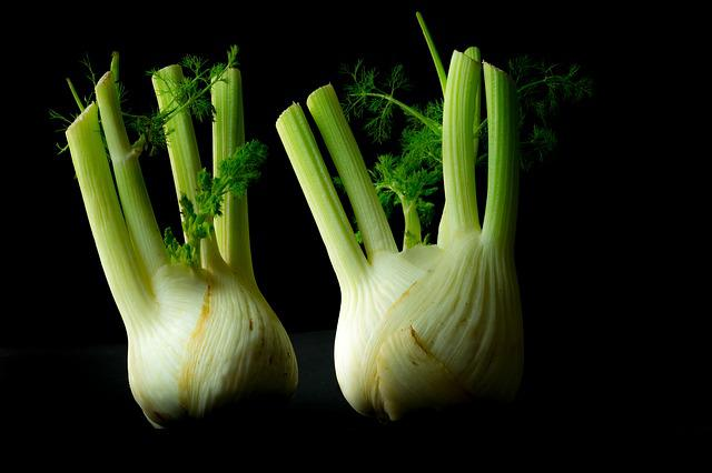 Vegetables, Fennel, Forget, Old, Green, Power Supply