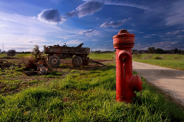 Field, Hydrant, Nature, Plant, Green, Water Hydrant