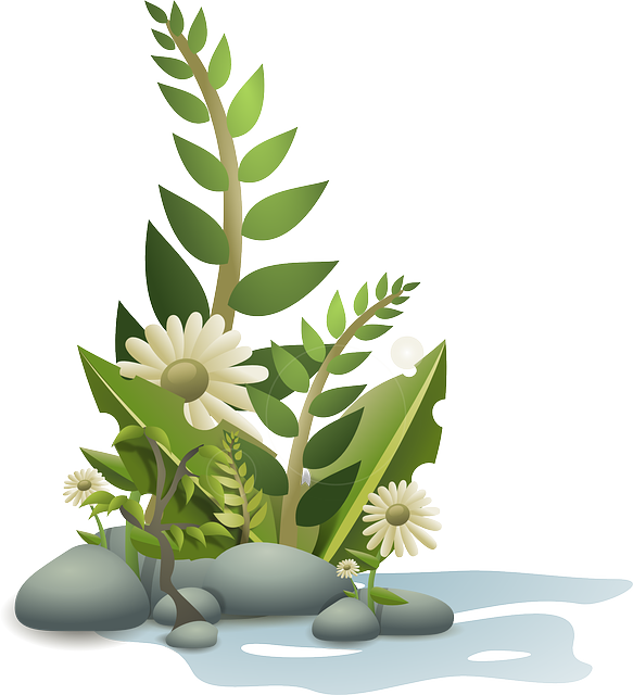 Flowers, Plant, Garden, Leaves, Grass, Greenery