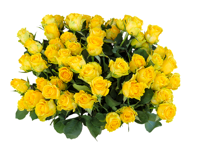 Emotions, Roses, Birthday, Png, Greeting, Bouquet