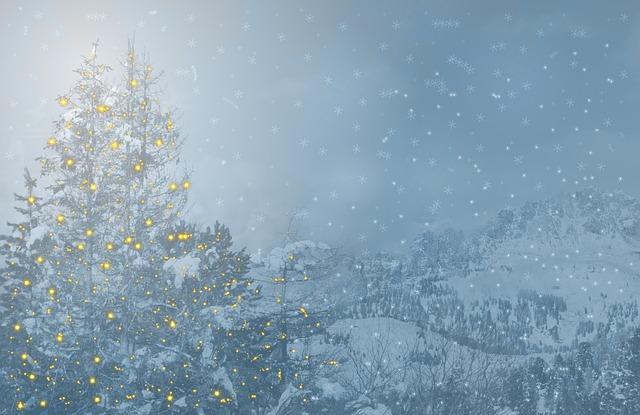 Christmas, Fir Tree, Christmas Motif, Greeting Card