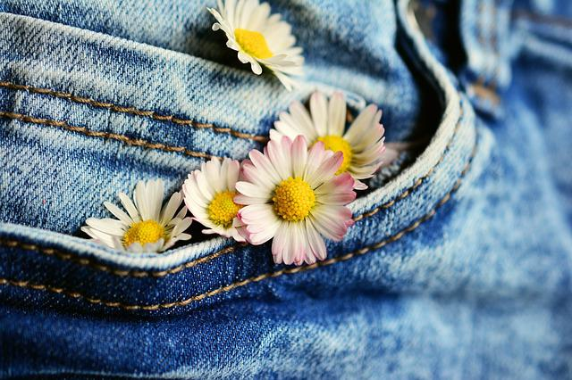 Pocket, Daisy, Jeans, Flowers, Textile, Denim, Greeting