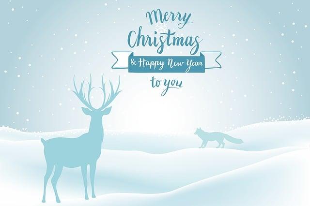 Merry Christmas, Festival, Greeting, Sparkle, Blue