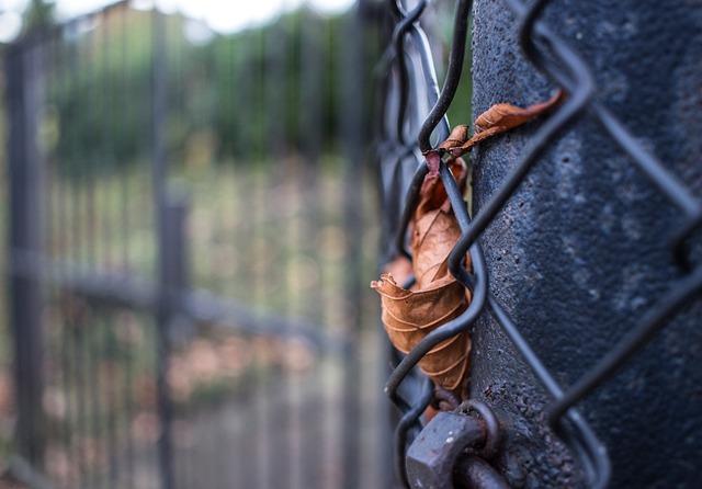 Autumn, Leaf, Grid, Goal, Leaves, Transience