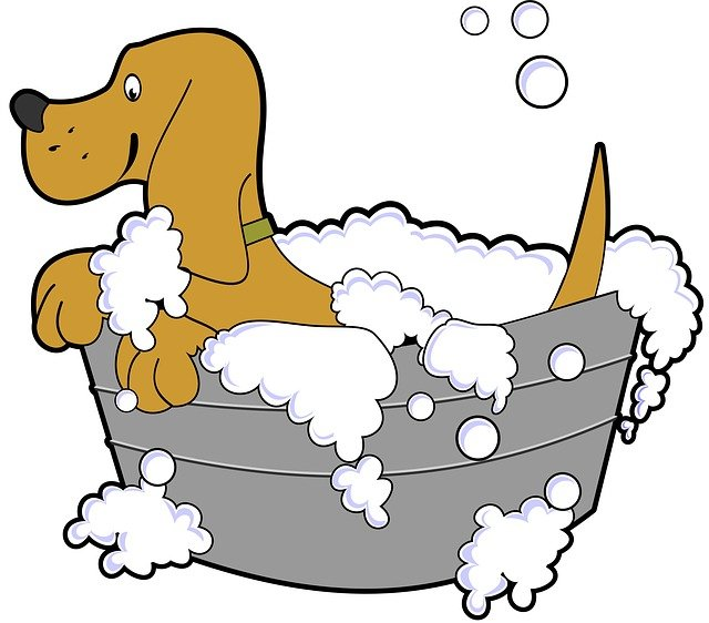 Dog, Bath, Grooming, Tub, Pet, Soap, Cartoon, Animal