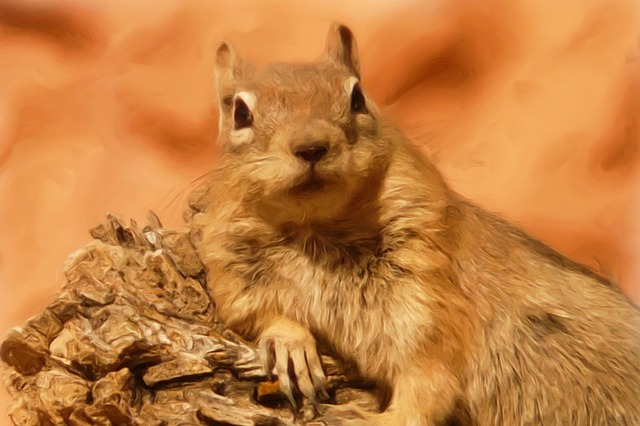 Painting, Oil Painting, Photo Painting, Ground Squirrel
