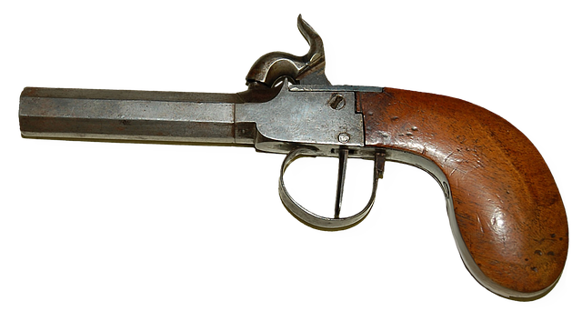 Gun, Duel, Weapons, Collection, Hobby, History, Trunk
