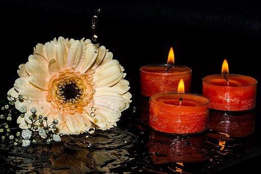 Gerbera, Gypsophila, Candles, Candlelight, Flame