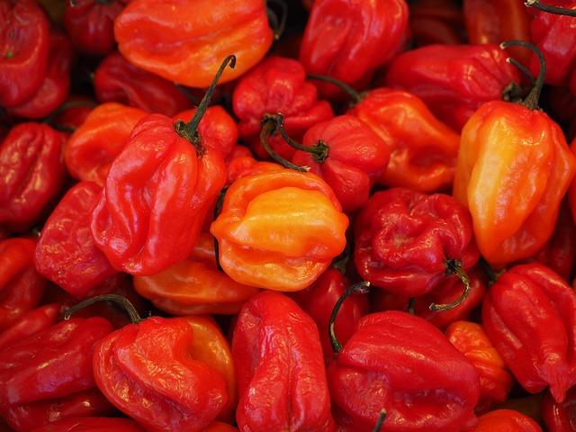 Habaneros, Chili, Capsicum Chinense, Capsicum Peppers