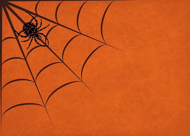 Background, Halloween, Spider, Cobweb, Orange