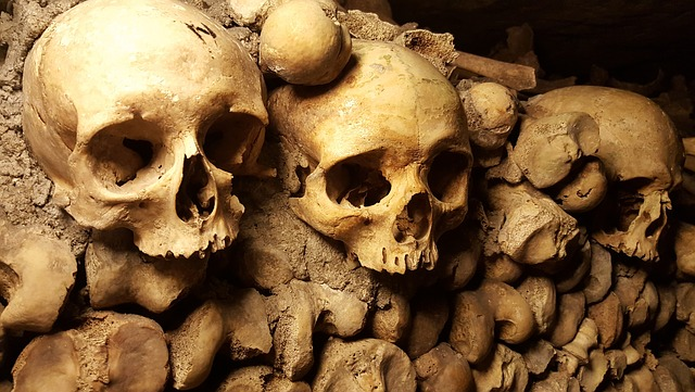 Catacombs, Paris, Skulls, Bones, Cemetery, Halloween