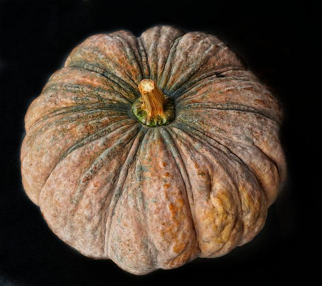 Large, Pumpkin, Halloween, Fall, Thanksgiving, Food
