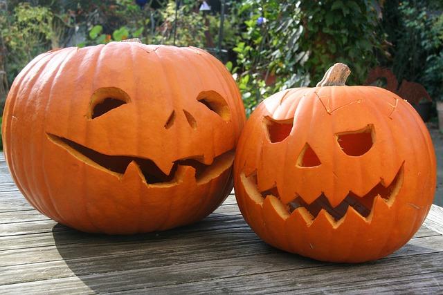 Pumpkin, Halloween, Lantern, Thanksgiving, Autumn
